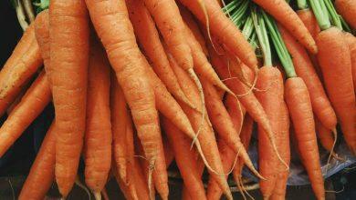 Photo de Est-il vrai que les carottes font un bronzage?